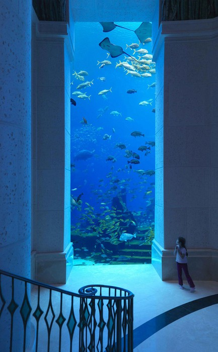 This is located at a hotel resort named Atlantis at The Palm in Dubai. The resort is modelled after the Atlantis, Paradise Island resort in Nassau, Bahamas. Almost everything in it is underwater themed.