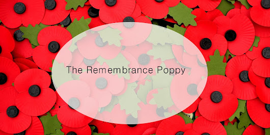 Leaving Routine: The Remembrance Poppy