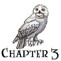 Harry Potter and the Philosopher's Stone Reading challenge online trivia quiz. Chapter 3