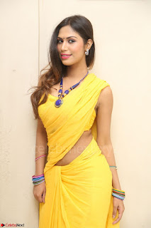 Nishigandha in Yellow backless Strapless Choli and Half Saree Spicy Pics 120.JPG