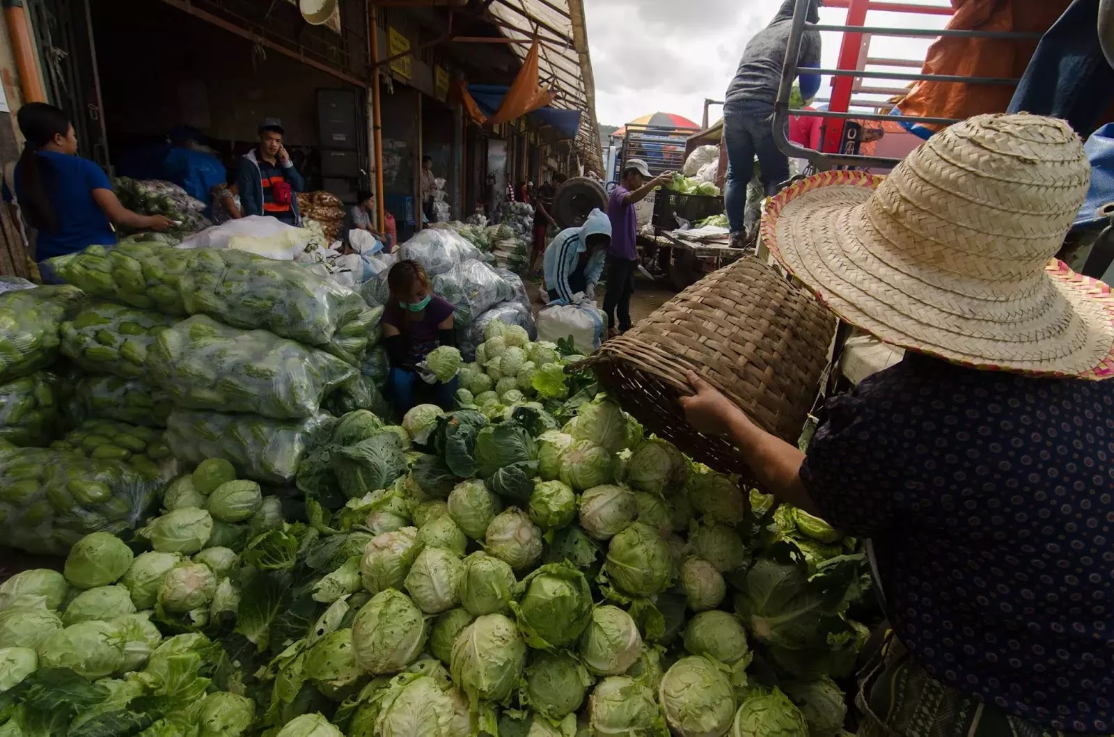 Cabbage Lettuce Chayote Depot Trading Post La Trinidad Benguet Cordillera Administrative Region Philippines