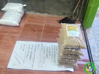 Benih pesanan  SULASTRI Klaten, Jateng  (Sebelum Packing)