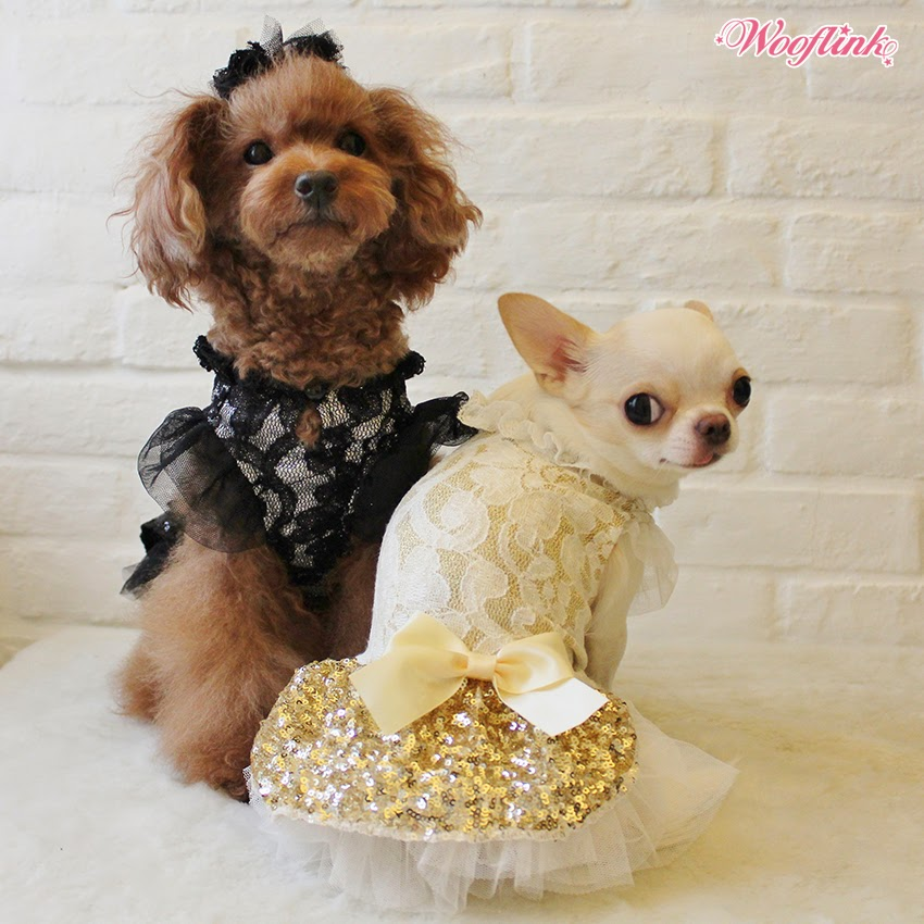 WOOFLINK - Hip designer dog clothes:  PARTY GIRL