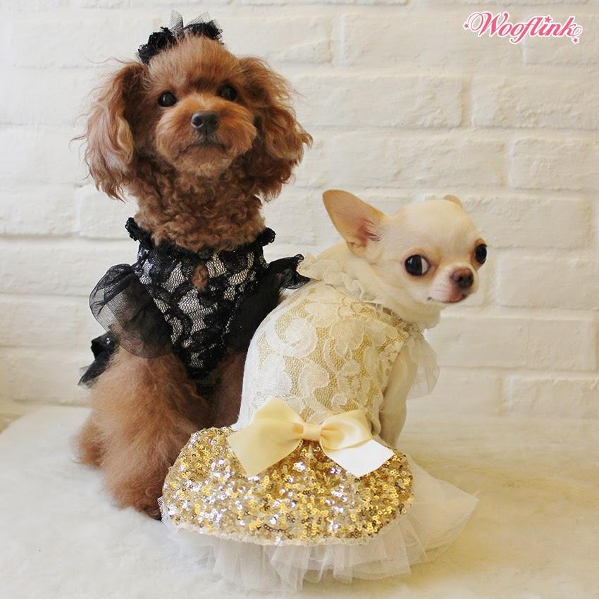WOOFLINK - Hip designer dog clothes:  PARTY GIRL