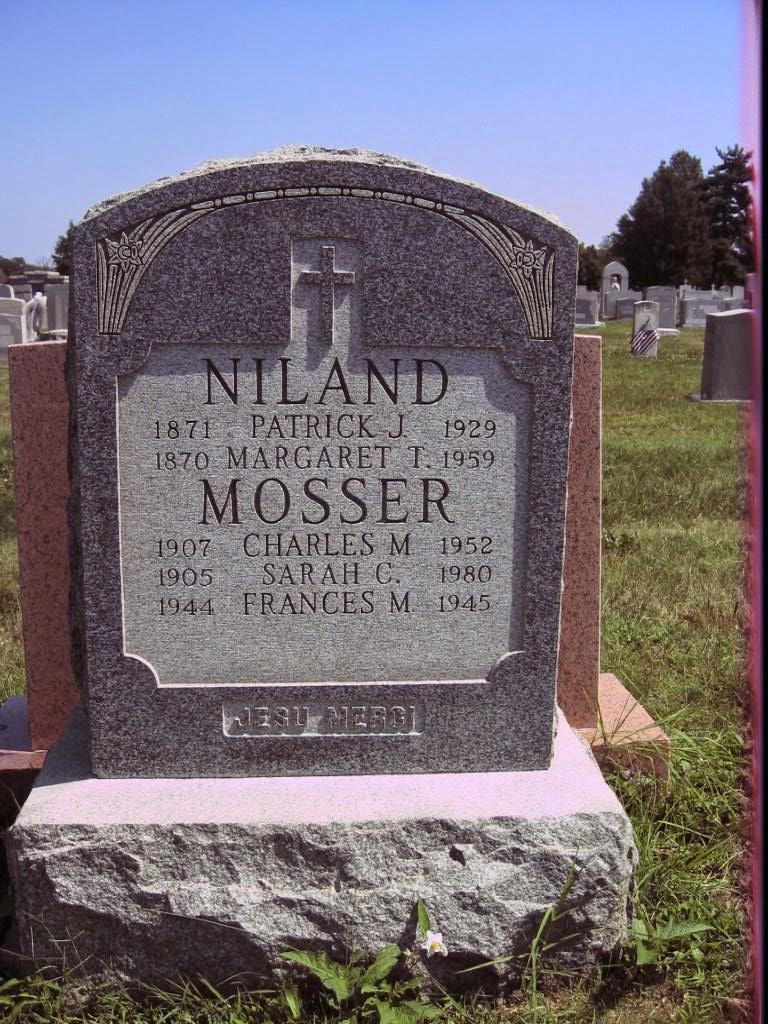 Touching Family History: Tombstone Tuesday:Patrick Niland Family