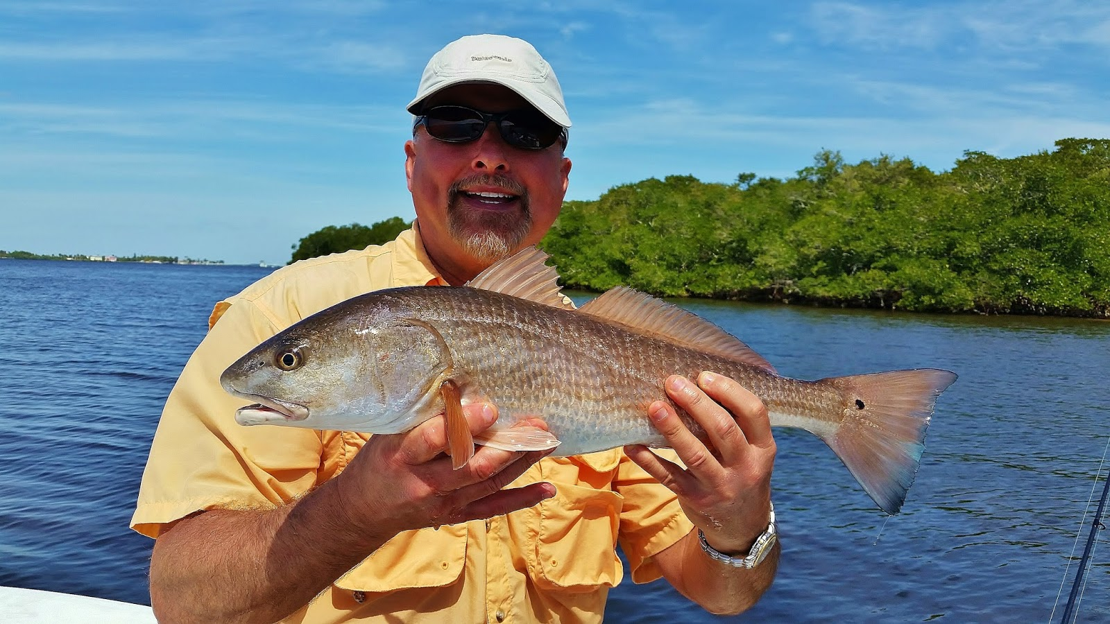 The pine island angler pine island in march for Pine island fishing charters