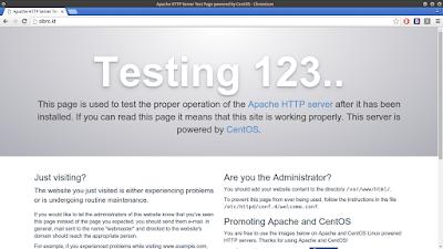 Cek juga pada browser anda lalu masukkan nama domainnya, jika berhasil maka muncul seperti ini