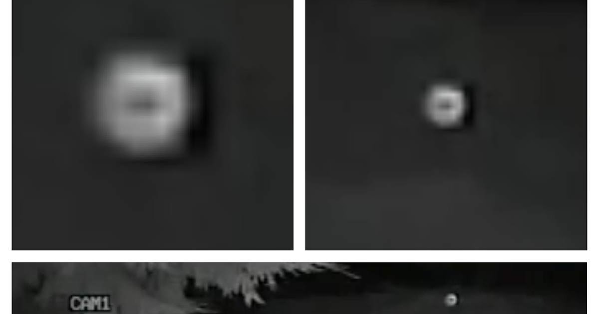 UFO SIGHTINGS DAILY: Orbs Caught coming close to trees at