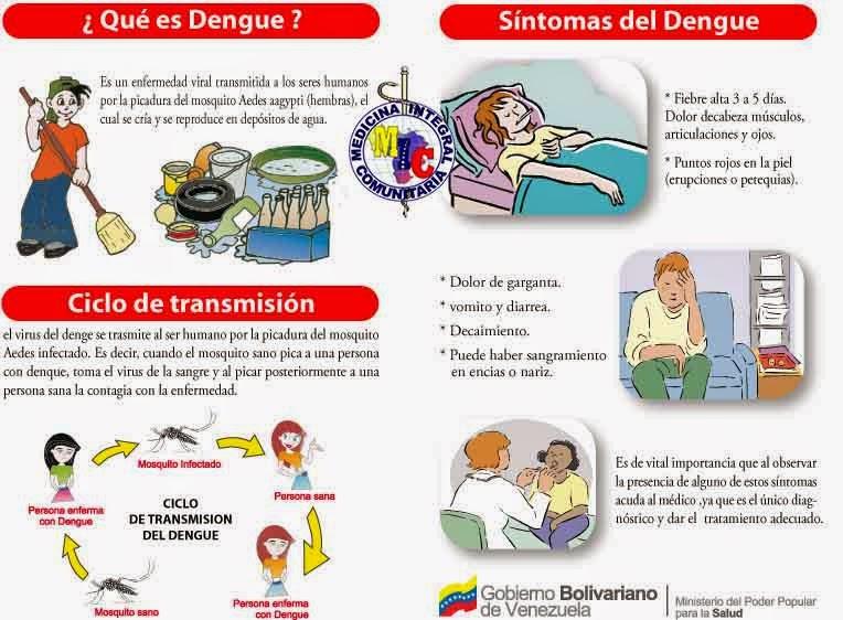 sintomas del dengue y tratamiento