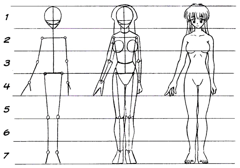 A B C Do Desenho Modelos De Corpo De Animes 2
