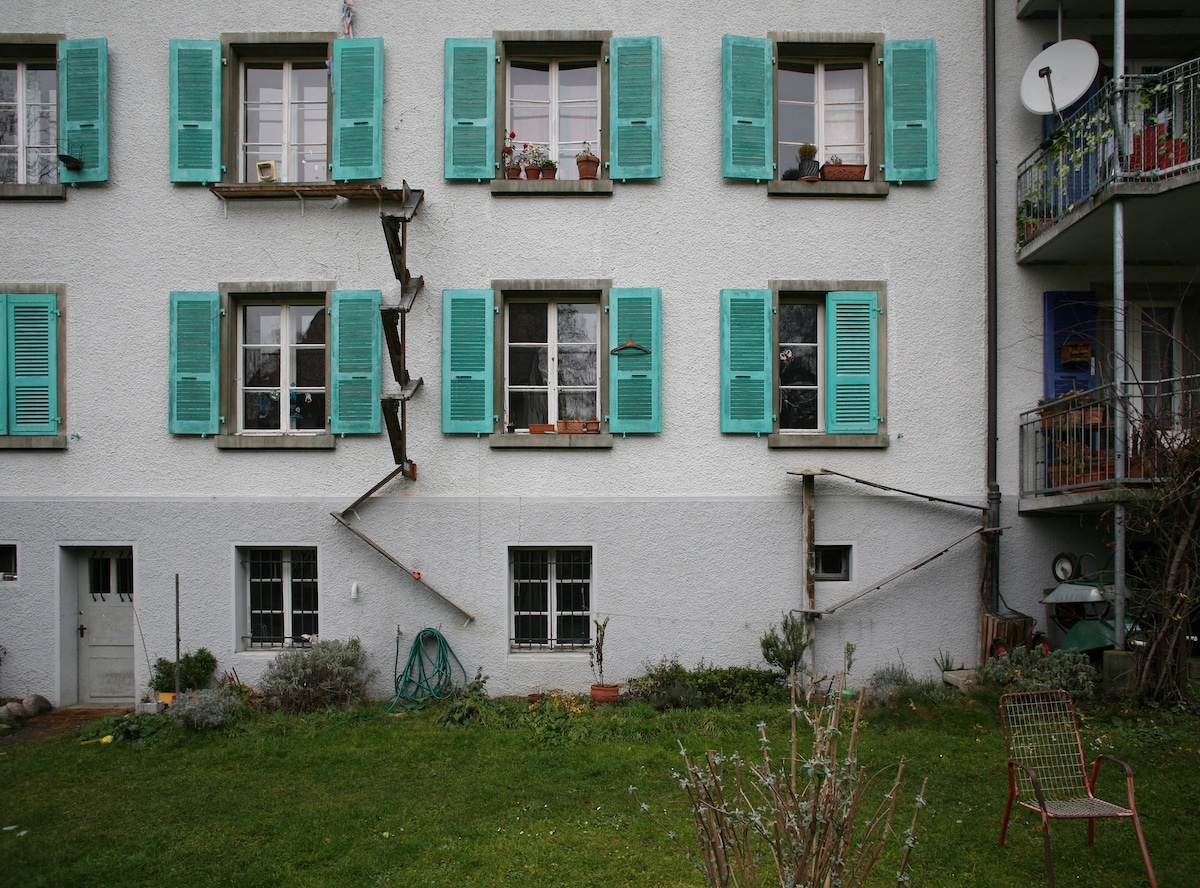 These Cat Ladders In Buildings In Switzerland Are The Best Thing Cat Owners Have Ever Seen