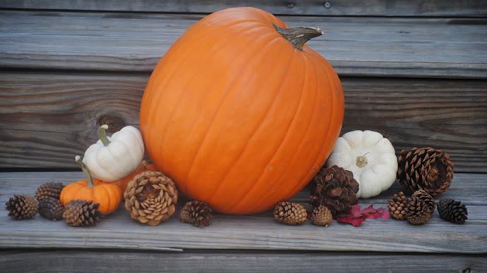 Wallpaper: Pumpkins Fall Holiday Decoration
