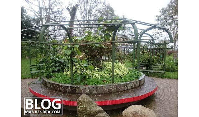 Taman Cibodas - Blog Mas Hendra