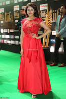 Saisha looks Glamorous Super cute in Transparent Red Gown at IIFA Utsavam Awards 015.JPG