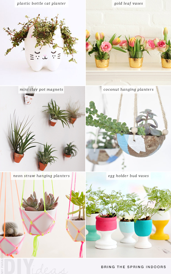 Diy bud vases, hanging planters and recycled bottles tutorials to bring the spring indoors.