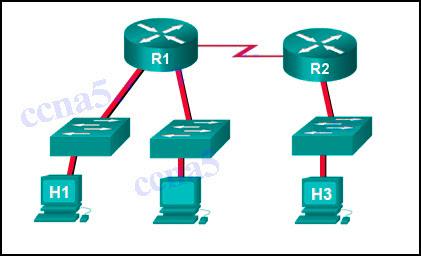 CCNA 1 Cisco v6.0 Chapter 11 - Answers