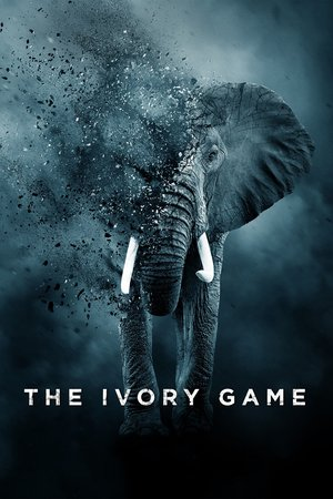 Poster The Ivory Game 2016