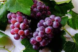 Wow,ini dia manfaat luar biasa buah Anggur!