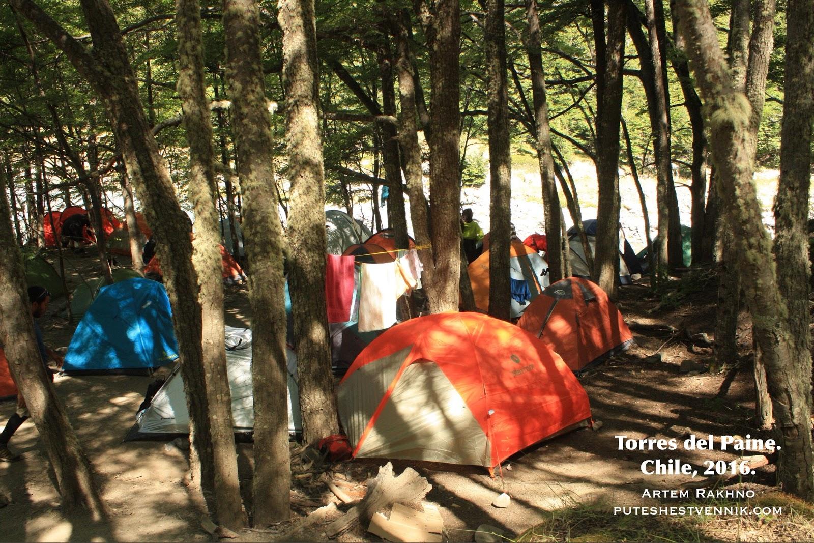 Палатки в лесу в Торрес-дель-Пайне