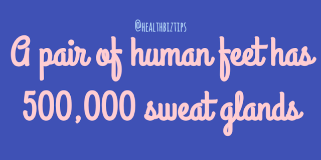 Health Facts & Tips @healthbiztips: A pair of human feet has 500,000 sweat glands.