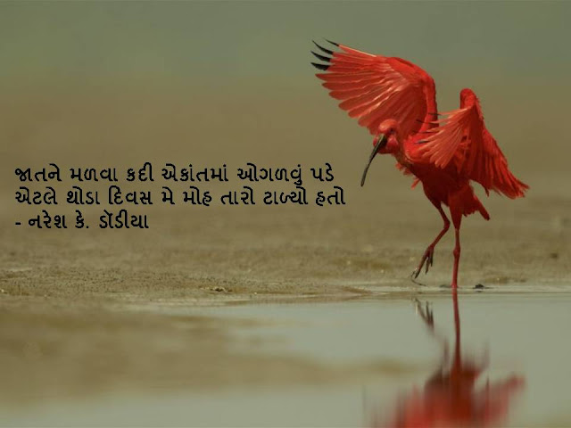 जातने मळवा कदी एकांतमां ओगळवुं पडे Gujarati Sher BY Naresh K. Dodia