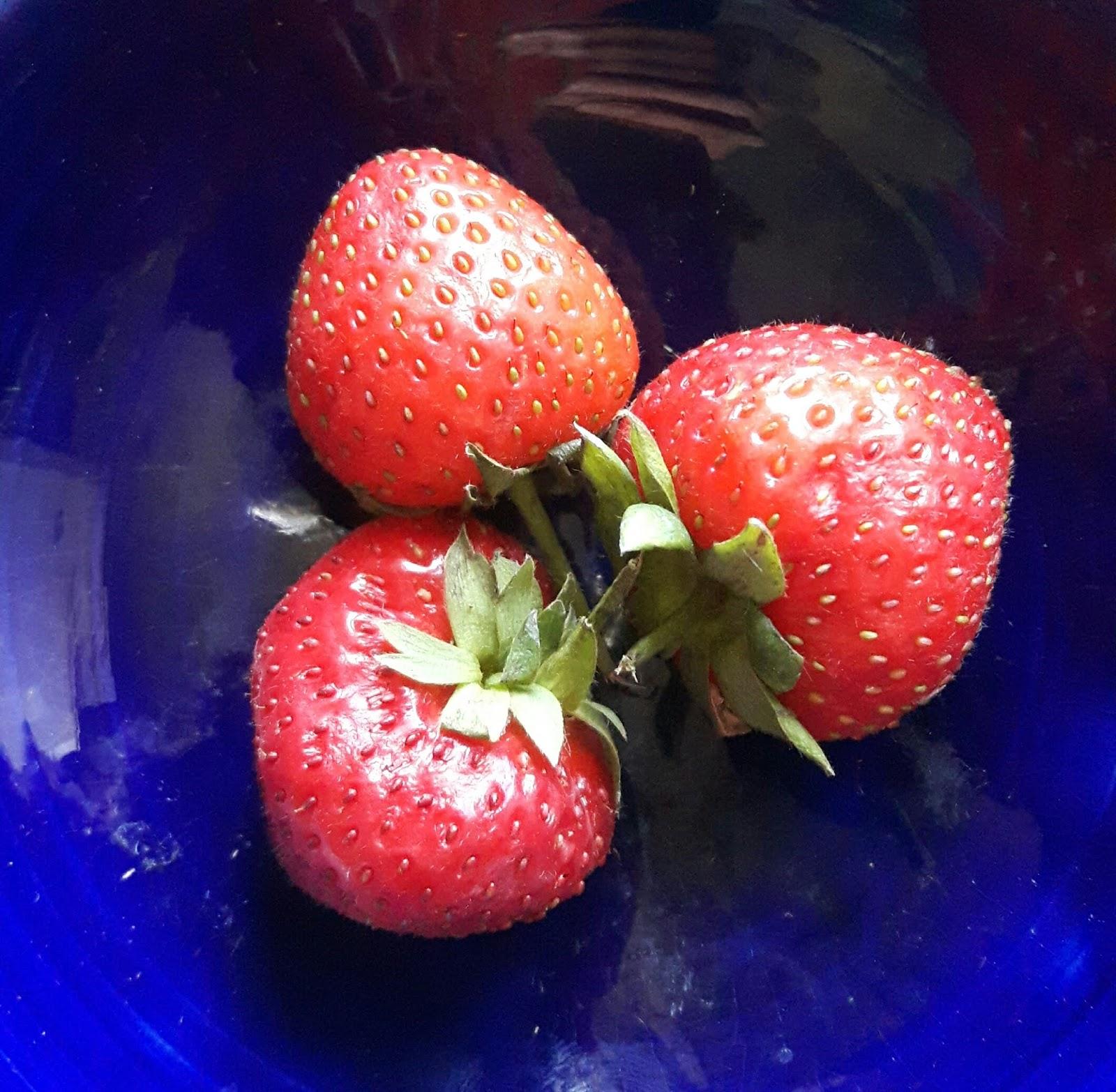 strawberry moon - HD1600×1566