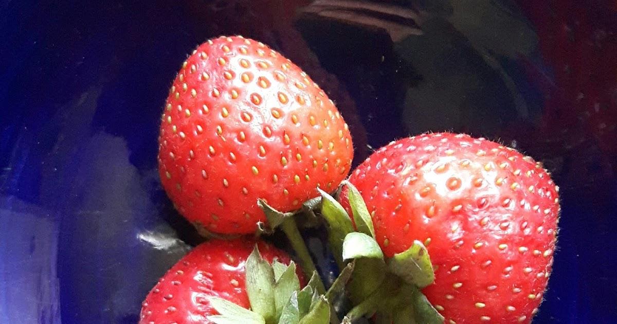 strawberry moon - 1200×630
