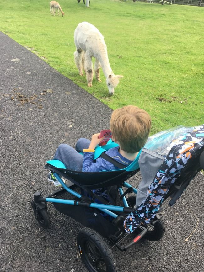 boy-in-micralite-festival-fastfold-stroller-at-dan-yr-ogof