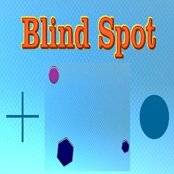 Memory Game: Blind Spot