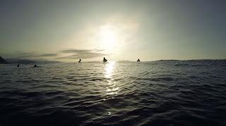 Resultado de imagen para centellas en el mar