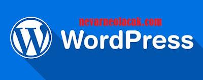 WordPress Etiketleri Eklerken Dikkat Edilmesi Gerekenler