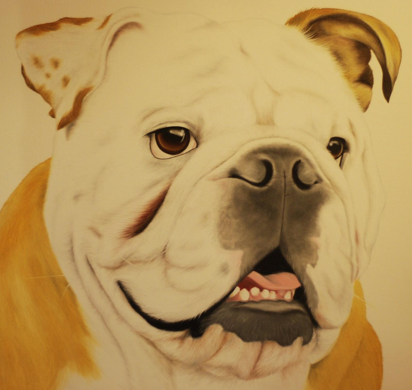 Bulldog pet portrait oil on canvas