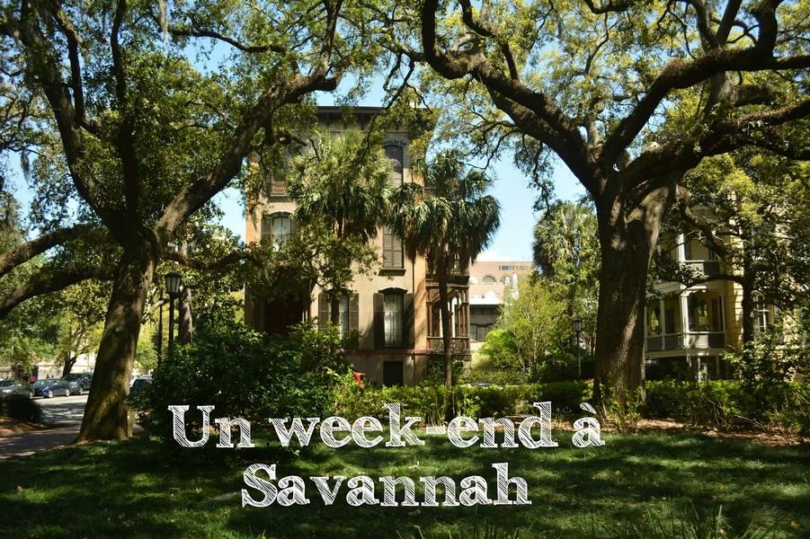 savannah-ville