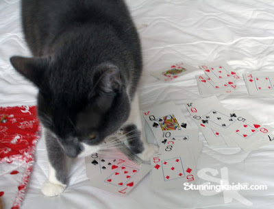 Cats and the Value of Solitaire