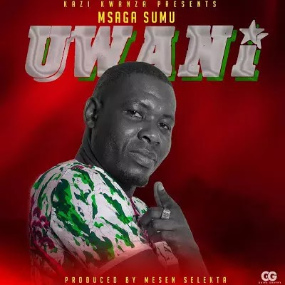Download Audio | Msagasumu - Uwani (Singeli)