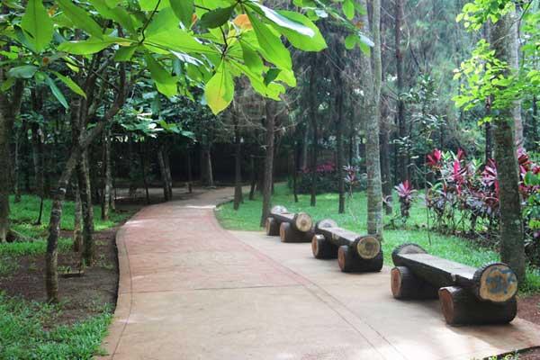 Hutan Kota 2 BSD
