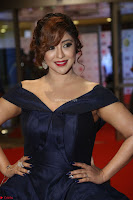 Payal Ghosh aka Harika in Dark Blue Deep Neck Sleeveless Gown at 64th Jio Filmfare Awards South 2017 ~  Exclusive 098.JPG