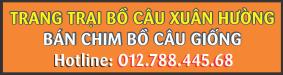 http://trangtraichimbocau.blogspot.com/2016/08/ban-chim-bo-cau-giong-ha-tinh-ha-noi.html