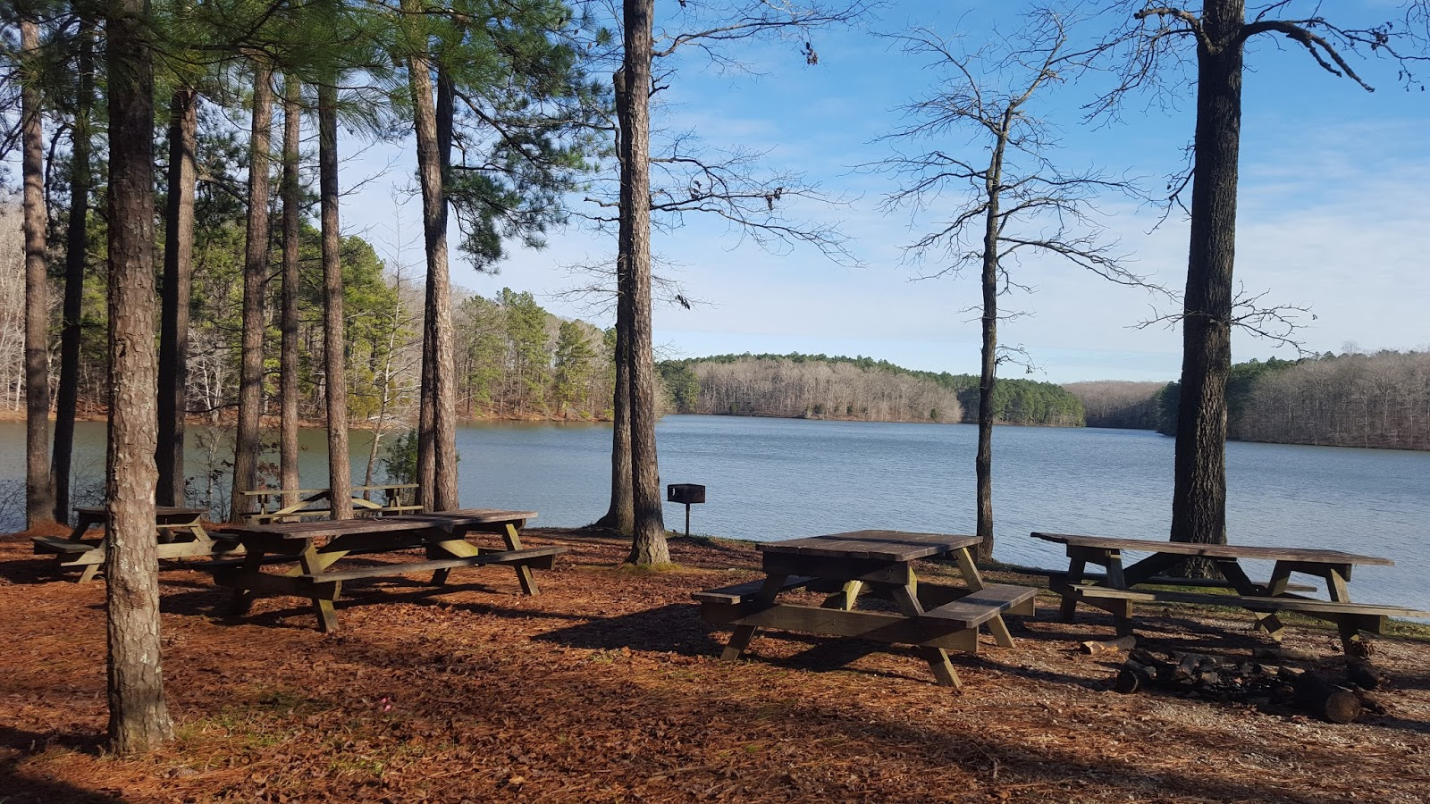 Divers And Sundry Natchez Trace State Park Trails