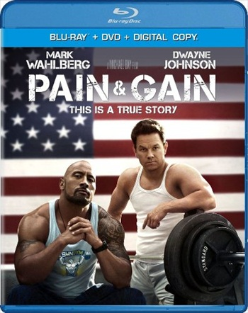 Pain and Gain 2013 Dual Audio Hindi 480p BluRay 400MB