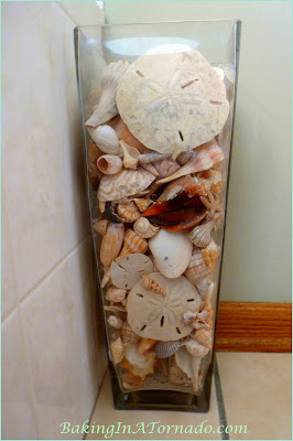 Shells collected on Marco Island | www.BakingInATornado.com | #nature #beach #shells