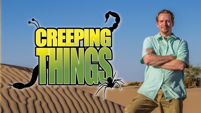 Awesome Science TV: Creeping Things