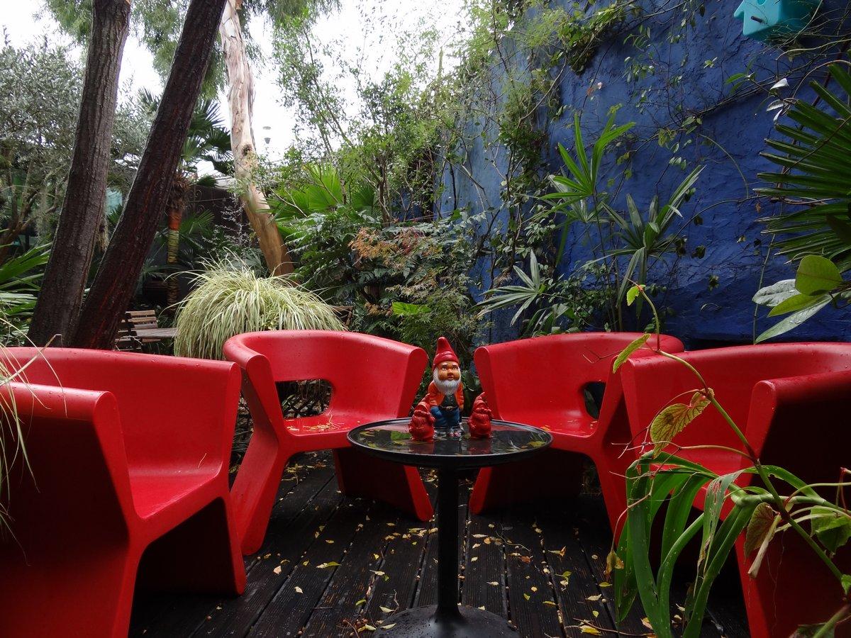 Jardin de b signoles un peu de couleur au jardin malgr for Au jardin des couleurs