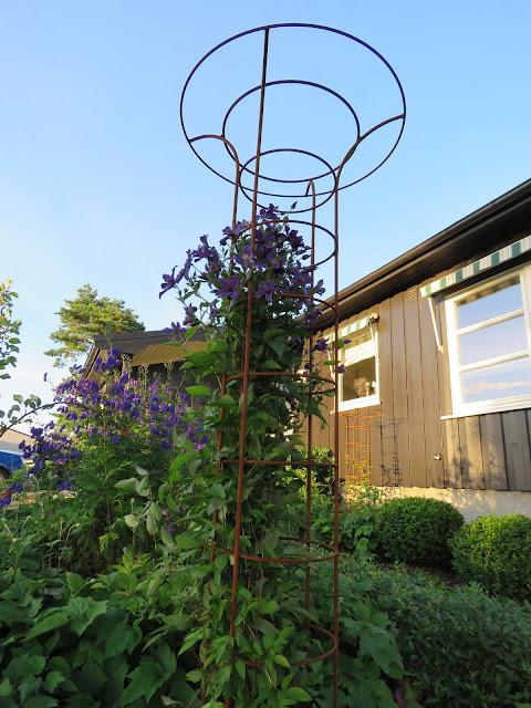 Tips til hagedesign. Klatrestativ i Furulunden