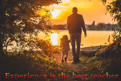 Experience is the best teacher cover image