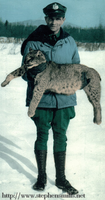 photo of Game Warden Alfred Jackson with a bobcat