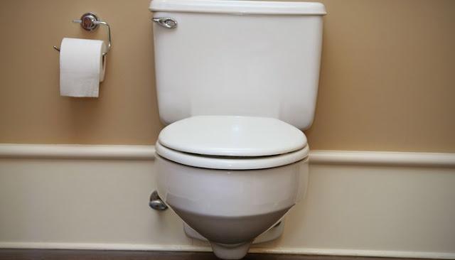 crane plumbing toilet seat parts