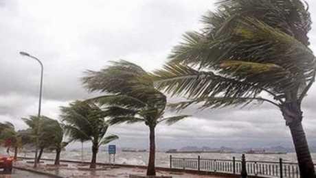 عاجل| أمطار غزيرة وطوارئ بالمحافظات وحريقان وانهيار جزئي لـ 3 عقارات وقتيلان وانقطاع للكهرباء والأرصاد تحذر من الساعات القادم