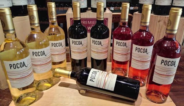 Premier Wine Vinho e Folia