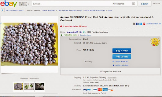 Selling acorns and chestnuts on-line